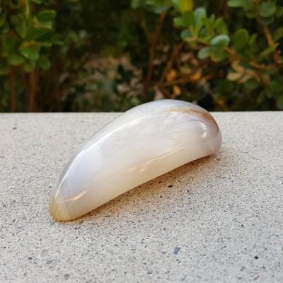 Agate Palm Stone